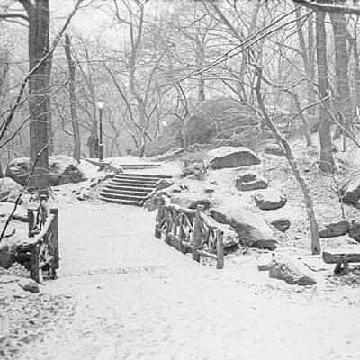 Ignatz Pilat:  First Gardener of Central Park